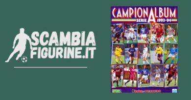 Campionalbum 1993-94 show